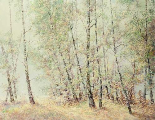 Работы художника Головина Константина (20 работ)