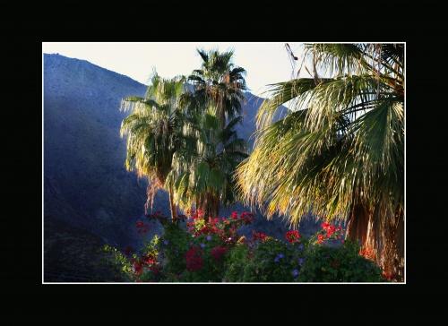 Пейзажи от Альберто Гильена (49 работ)