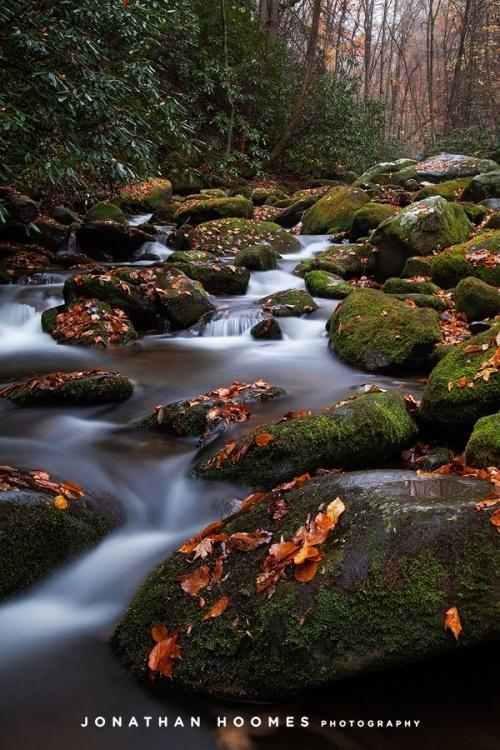 Мир в Фотографии - World In Photo 838 (62 фото)