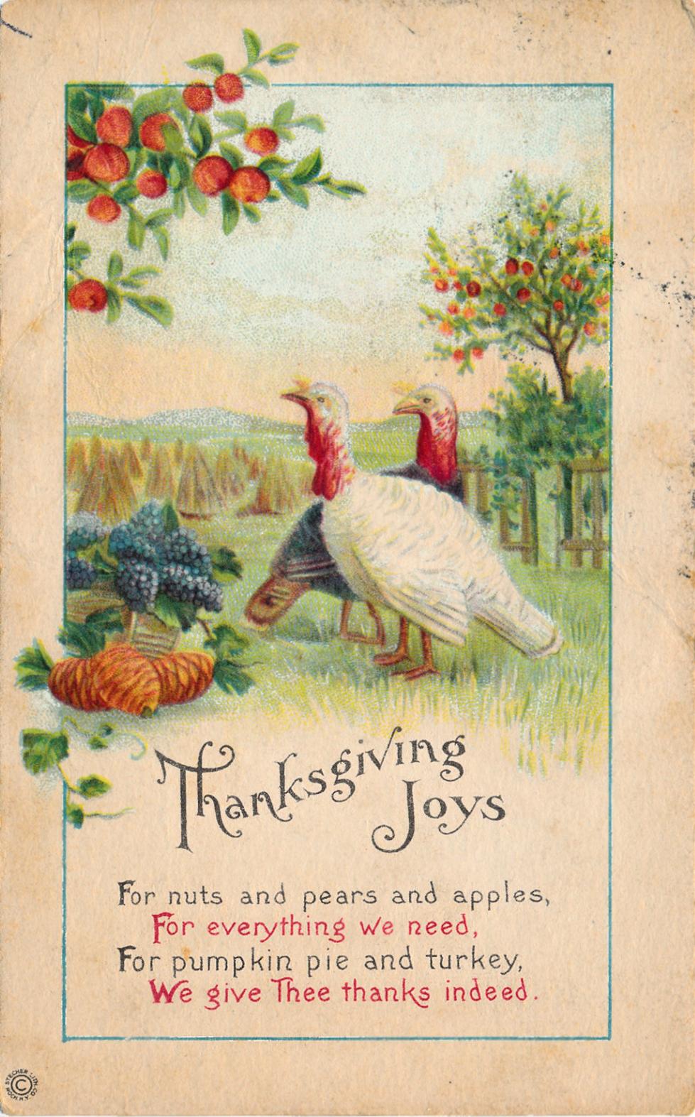 написание открытки к дню благодарения на англ яз