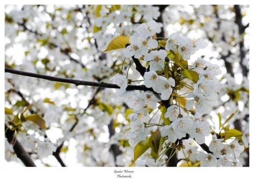 Мир в Фотографии - World In Photo 826 (62 фото)