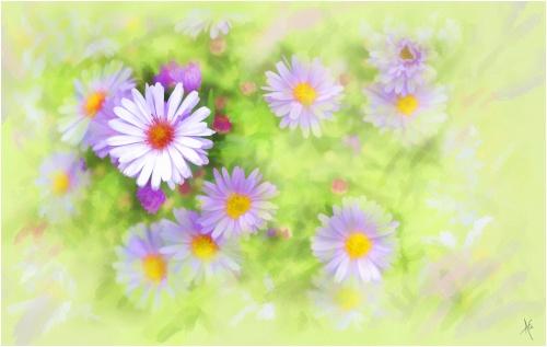 Цветы от Альберто Гильена 3 (56 работ)