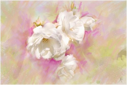 Цветы от Альберто Гильена 3 (56 фото)