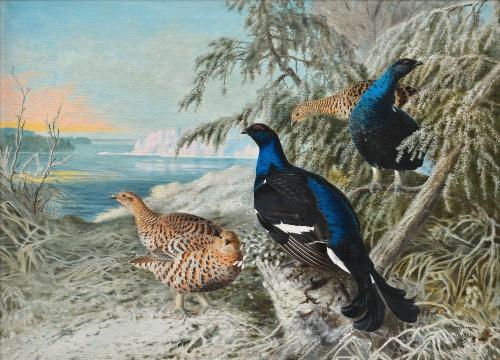 Финский художник Matti Karppanen (1873-1953) (18 работ)