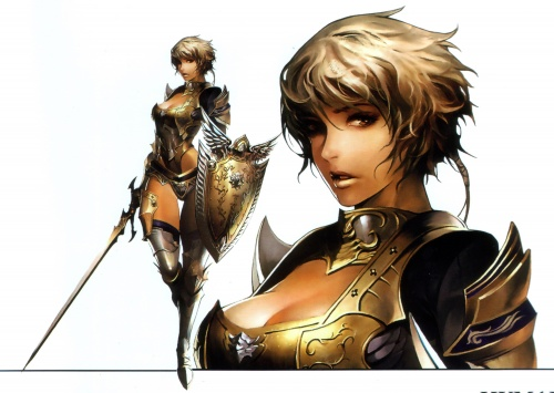 Artbooks / Lineage II Art Books (26 фото)