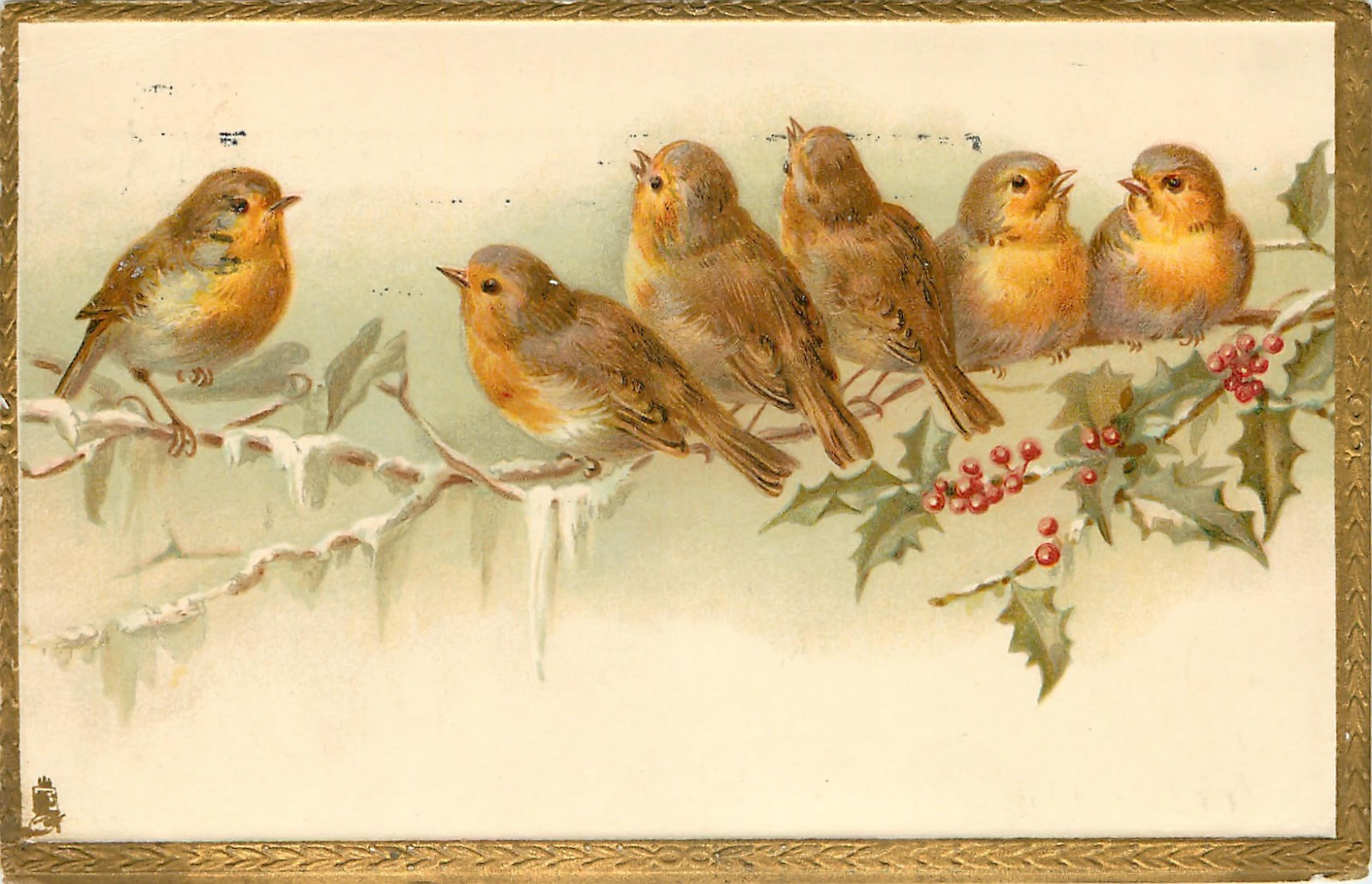 открытка две птички концу