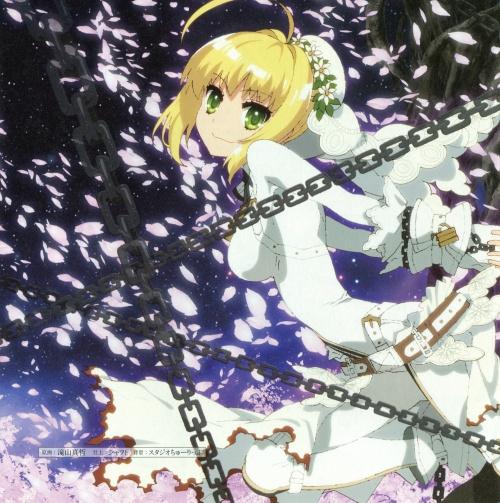 Artbooks / Fate/EXTRA CCC EXTRA Garden (38 фото)