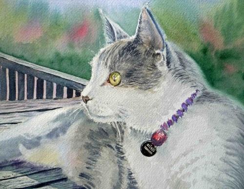 Cats | Домашние любимцы - кошки, коты и котята (67 фото)