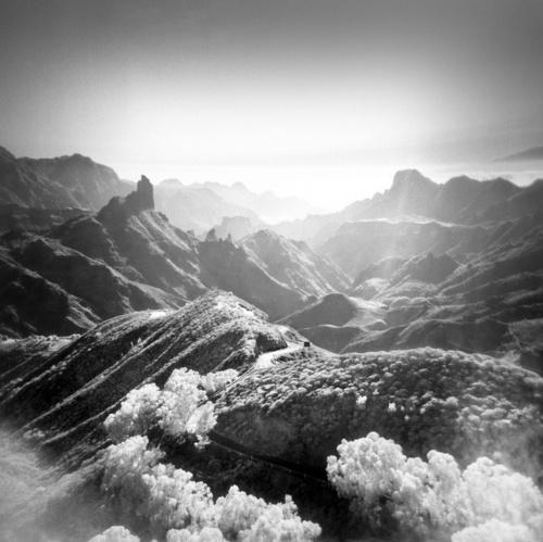 Фотограф Reuben Wu (59 фото)