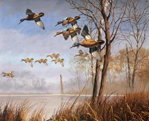 Работы художника David Maass (101 фото)