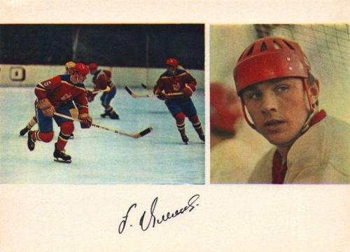 Сборная команда СССР по хоккею с автографами 1971г (25 фото)