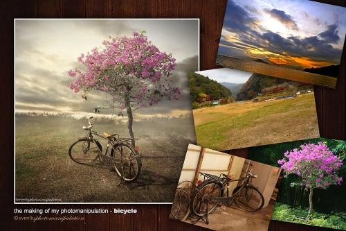 Коллекция работ фотографа Even Liu (Hong Kong) (79 фото)