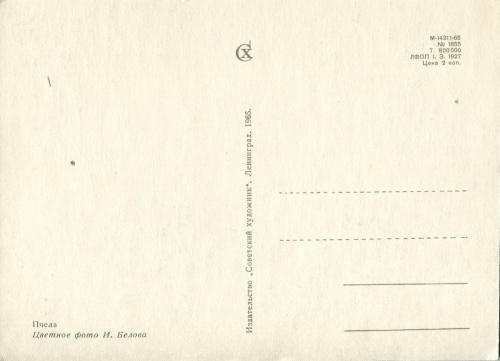 Сответские открытки. (10 Часть). Животные (8 открыток)