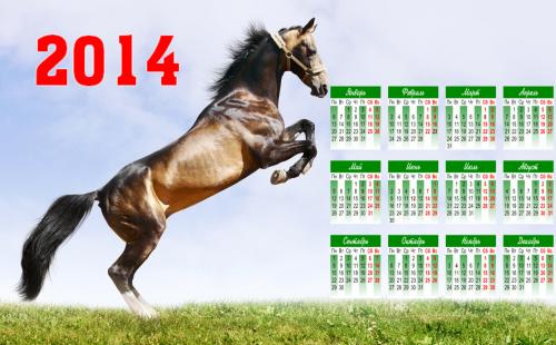 Летняя кобылка - Календарь 2014
