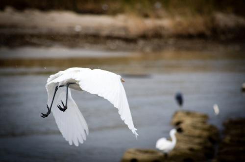 Мир в Фотографии - World In Photo 878