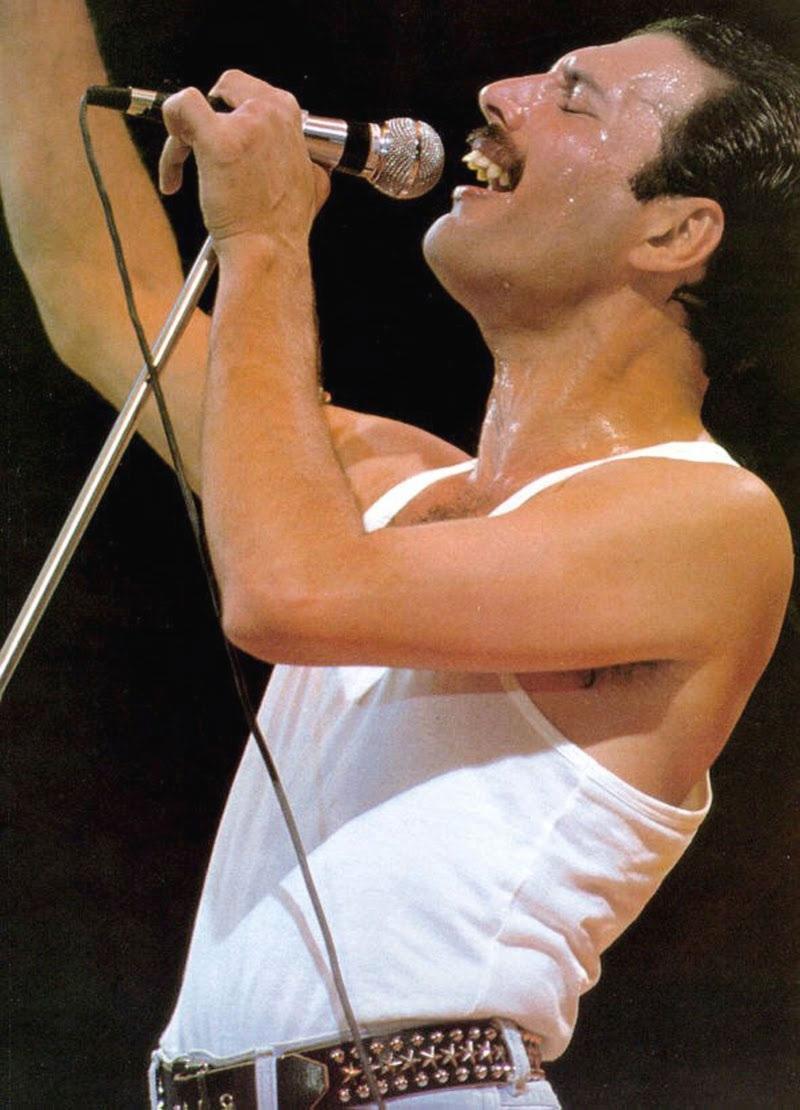 Freddie Mercury  The Great Pretender Official Video