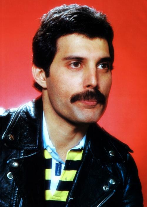 Freddie Mercury and Queen - Фредди Меркури и группа Queen (Big Photo Pack) (1800 фото)