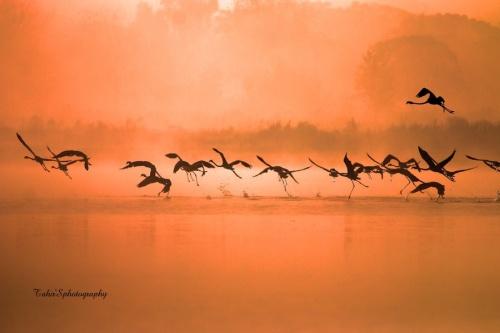 Мир в Фотографии - World In Photo 921 (100 фото)