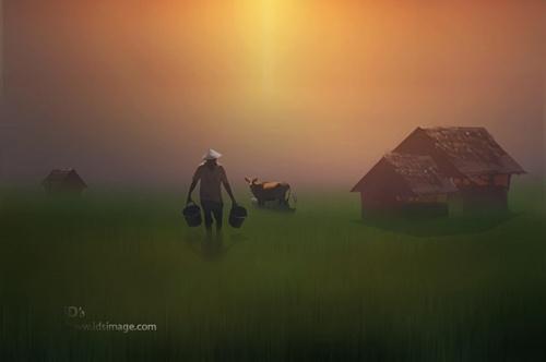 Фотограф Idrus Arsyad (37 фото)