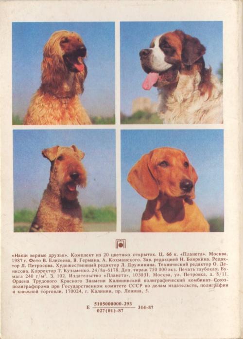 Набор открыток - Наши верные друзья (45 фото)