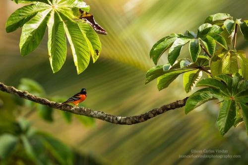 Мир в Фотографии - World In Photo 922 (100 фото)