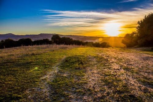 Мир в Фотографии - World In Photo 906 (100 фото)