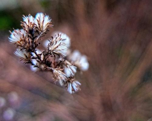 Мир в Фотографии - World In Photo 901 (100 фото)