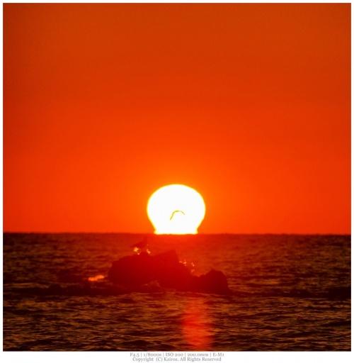 Мир в Фотографии - World In Photo 900 (100 фото)