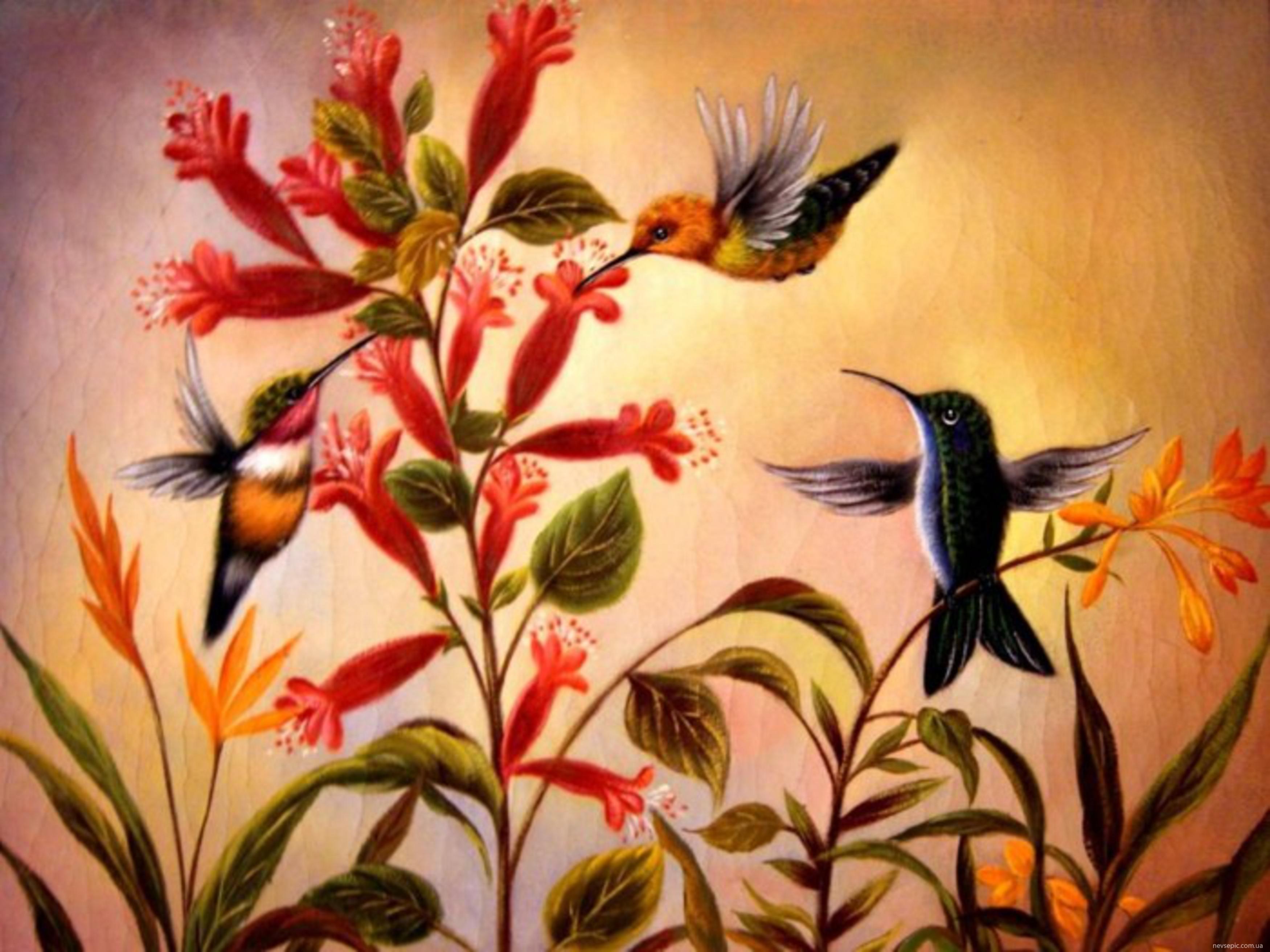 Фото живопись цветы и птицы