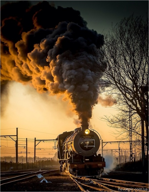 Steam locomotive (145 фото)