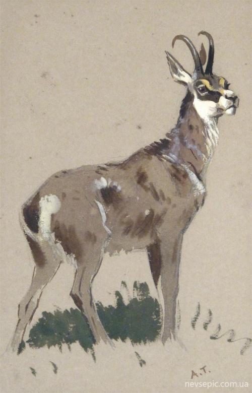 Художник - иллюстратор Archibald Thorburn (1860-1935) (171 фото)