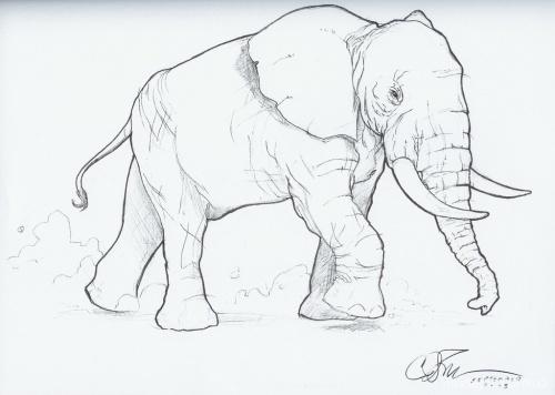 Chad Spilker Sketchbook (50 фото)