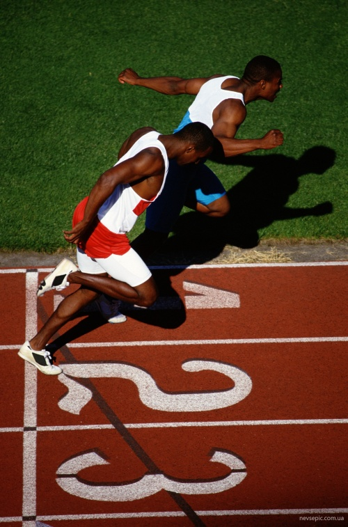 PhotoDisc - International Sports (331 фото)