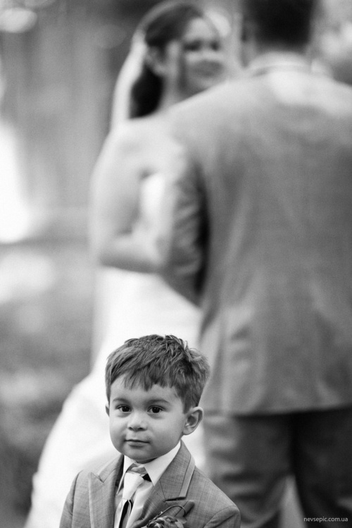 Фотограф Aaron Draper (50 фото)